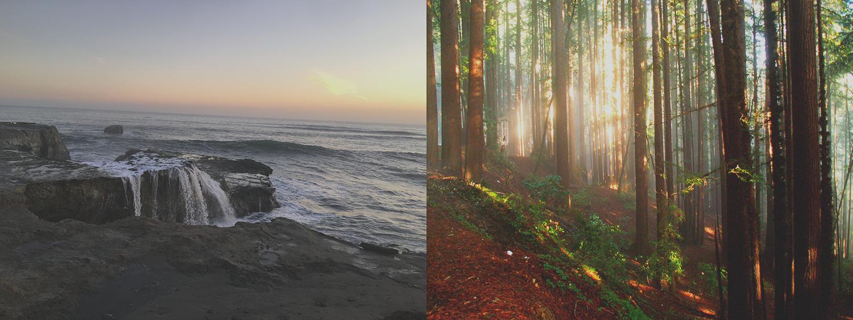 Two Locations in Beautiful Santa Cruz County